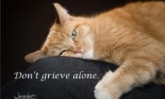 Pet Loss Grief Group