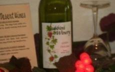 Gubbini Wine Shop