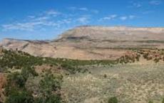 Ute Petroglyph Trail