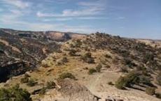 Easy Rider Trail