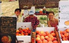 Palisade Peach Ranch