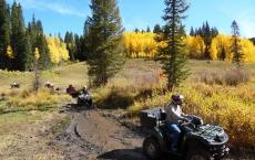 Grand Mesa Adventures