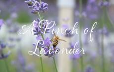 A Pinch of Lavender
