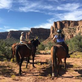 Horseback Riding   Visit Grand Junction, Colorado