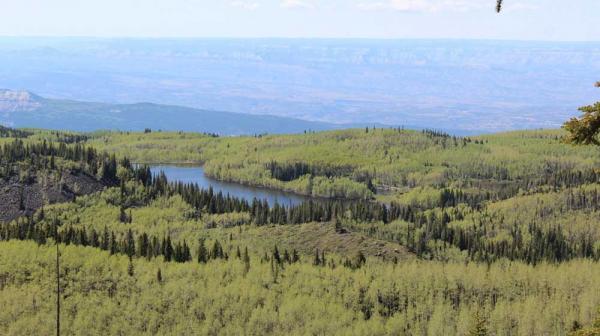 Exploring Grand Mesa National Forest Visit Grand