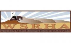 Western Slope Reining Horse Harvest Buckle Bonanza Show
