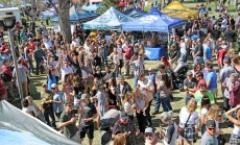 Southwest Arbor Fest - 18th Annual