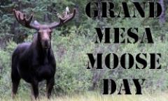 Grand Mesa Moose Day