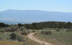 Gunny Loop Trail - Lunch Loop Trail System