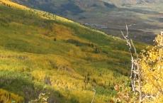 Grand Mesa Scenic and Historic Byway Association