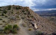 Moore Fun Trail