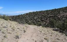 Canyon View Trail