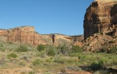 Ute Canyon Trail