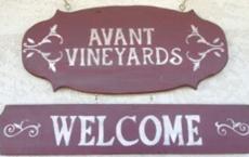 Avant Vineyards