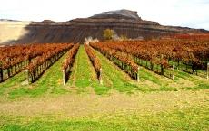 High Country Orchards & Vineyards and Colterris Wines