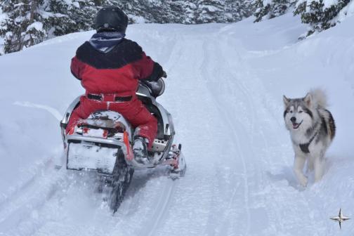 Top Winter Activities Around Grand Junction | Visit Grand